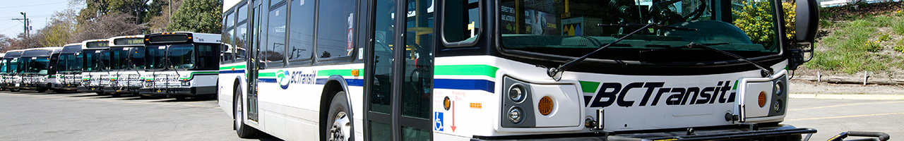 Transportation & Transit (SSI)