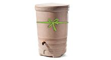 Rain Barrels 101