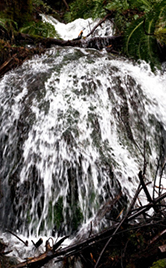 goldstream_waterfall 166x268  tall