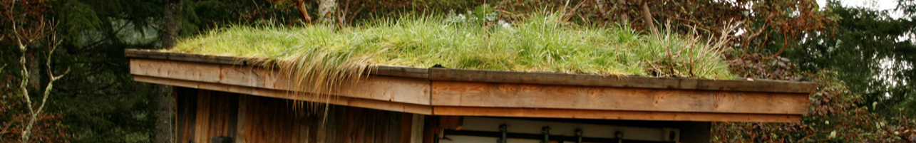 CRD Green Roof & Living Wall