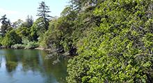 Gorge Waterway & Portage Inlet