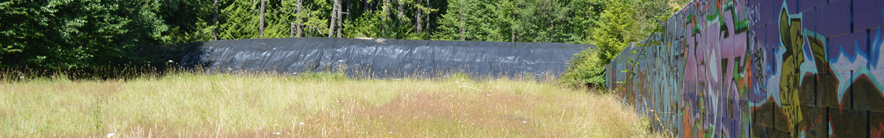 Thetis Lake Remediation Project