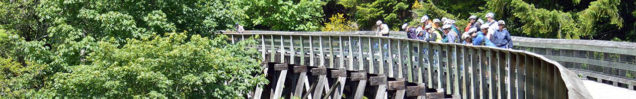 Todd Creek Trestle Restoration