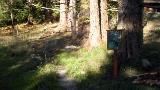 Baker-Harrison Trail
