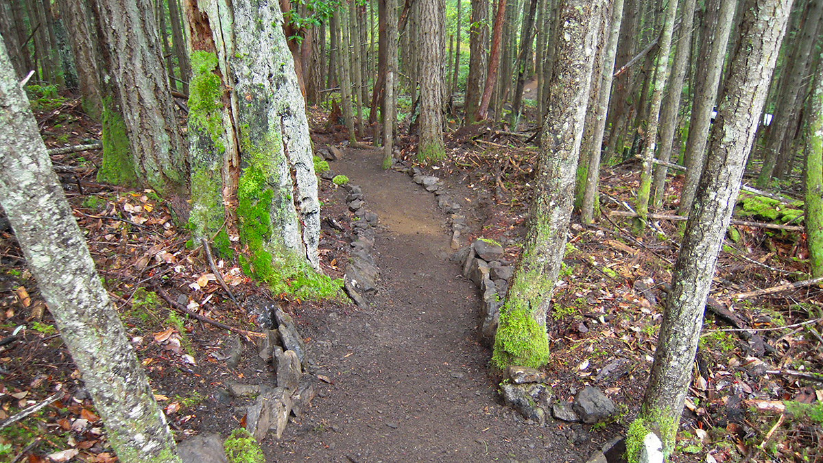 Bryant Hill - Peter Arnell Connector Trail