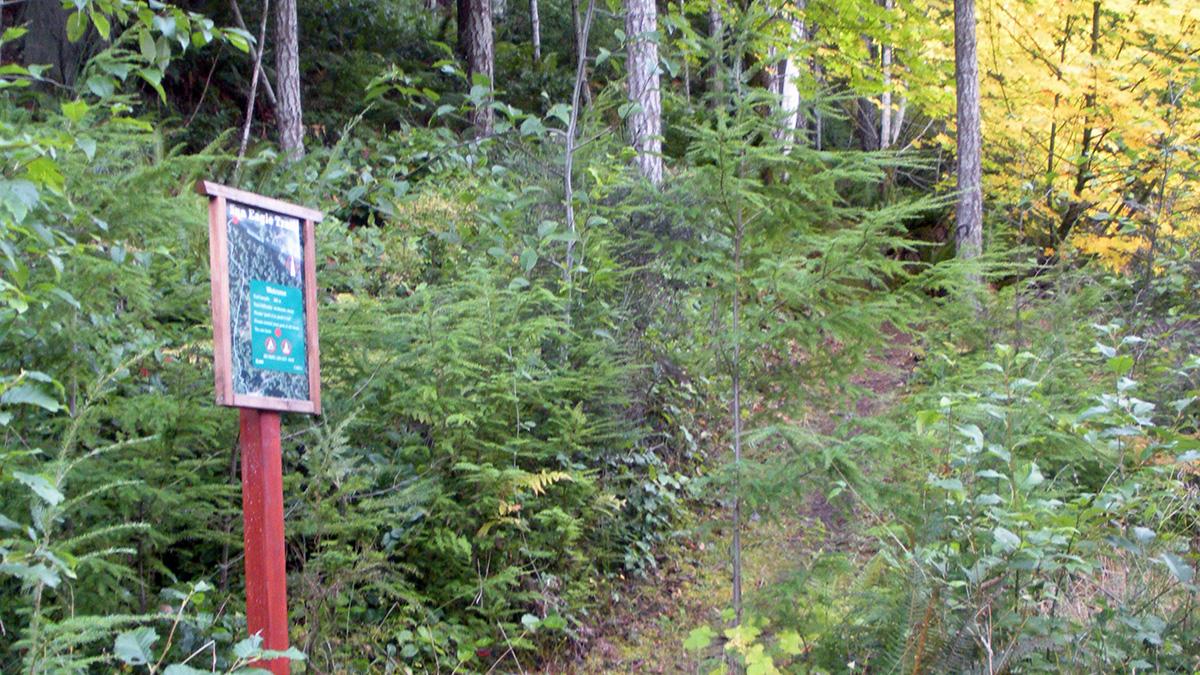 Sun Eagle Trail