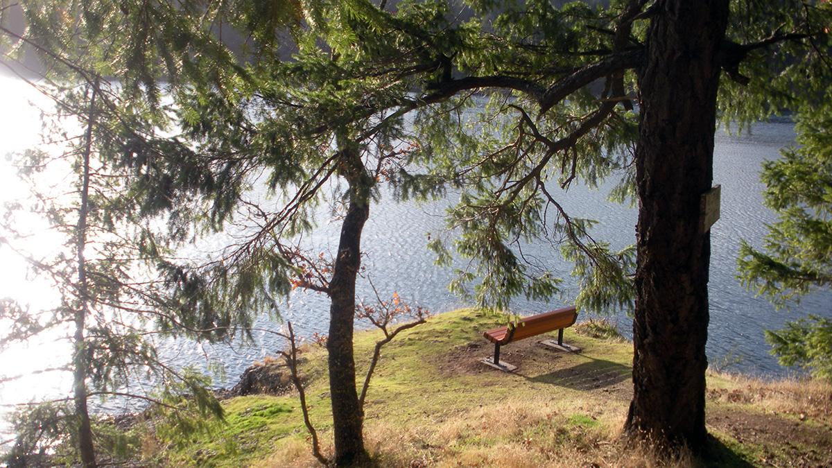 Welbury Bay Park