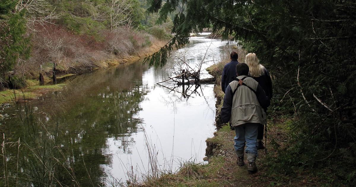 Ayum Creek Regional Park Reserve
