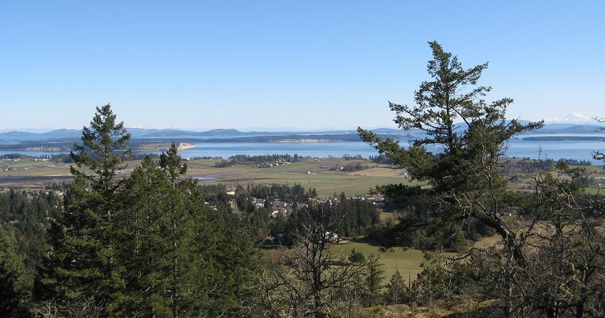 Bear Hill Regional Park