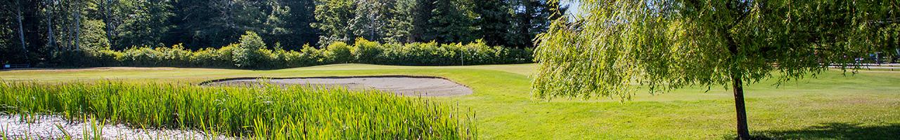 DeMamiel Creek Golf Course
