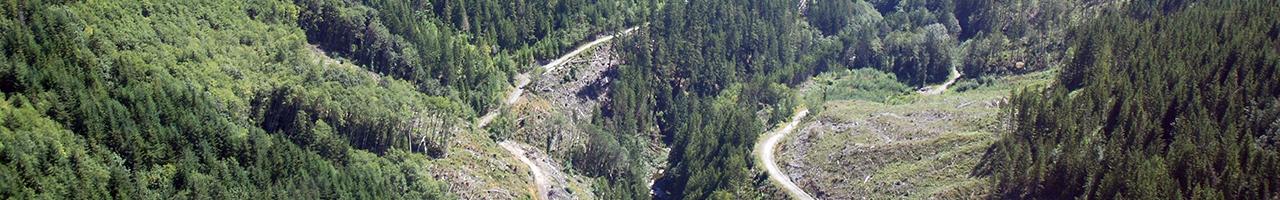 Leech River Watershed Restoration