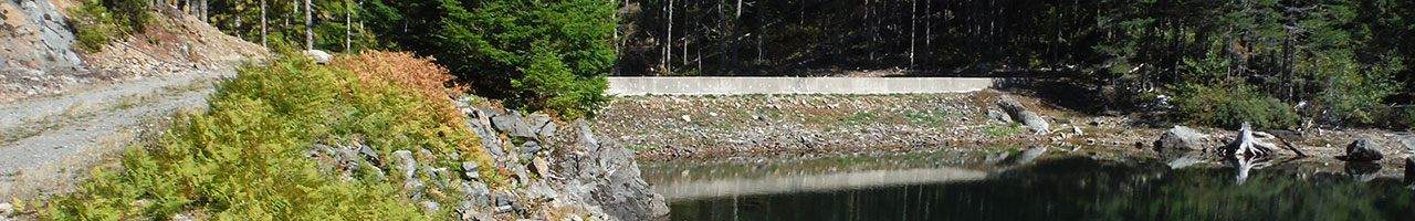 Lubbe Dam No. 4 Remediation